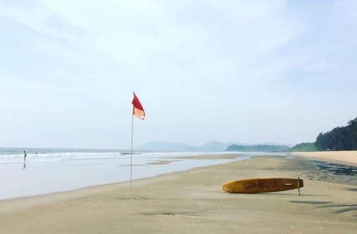 Galgibaga Beach (Turtle Beach)