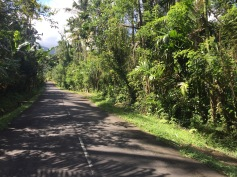 Countryside in East Bali