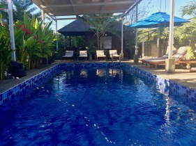 Our swimming pool at Turtle Garden