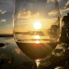 A glass of sunshine