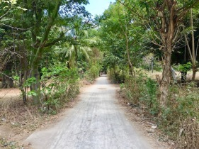 Road on Gili Air leading to another beach