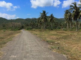 Road off Mekaki Beach Lombok