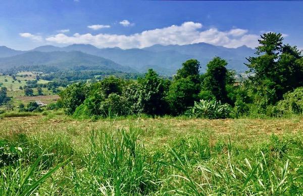 Chiang Mai landscape